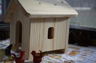 Chicken coop4